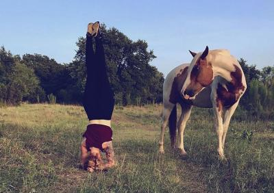 Yoga and Horse