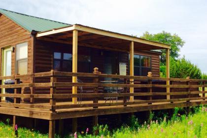 Buena Vista Cabin